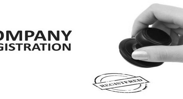 Company Registration in Zimbabwe : Do It Yourself Manual And Templates
